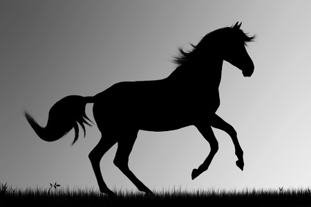 Silhouette of running horse on gray  background