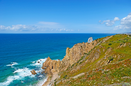 The seascape of Atlantic Ocean from the rocky cliffs of Cabo da Roca (Cape Roca), covered with flowers of hottentot-fig, Sintra, Portugal.