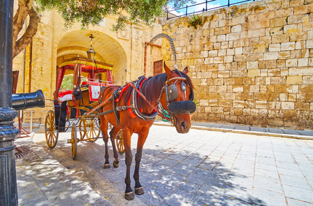 The city tour in horse-drawn carriage (Karozzin) is the best choice to enjoy medieval Mdina, feel its atmosphere, slowly riding its narrow alleys, Malta.