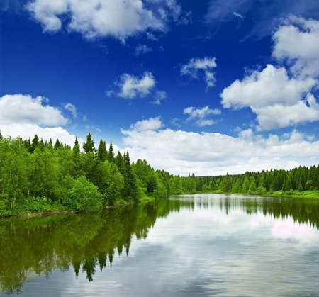 Foto per Silent lake near green forest. - Immagine Royalty Free