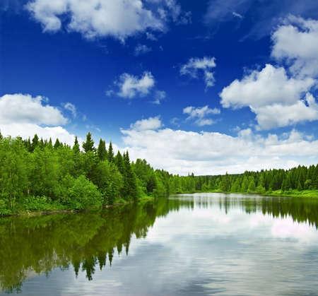Silent lake near green forest.