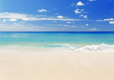 Foto de Tropical white sand beach and blue sky. - Imagen libre de derechos