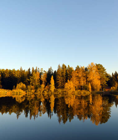 Foto de Autumn forest and lake in the fall season. - Imagen libre de derechos