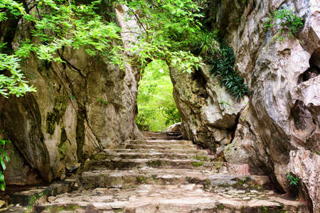Foto de Scenic stone stairs leading up to gate in rocks among green foliage. Way to enigmatic tropical woods. Forest in summer season. - Imagen libre de derechos