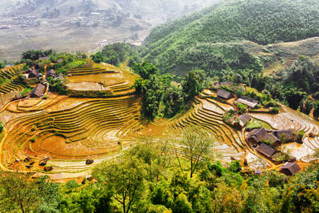 Top view of village houses and rice terraces filled with water in autumn. The Hoang Lien Mountains, Sapa District, Lao Cai Province, Vietnam. Sa Pa is a popular tourist destination of Asia.