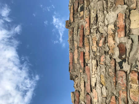 background is an old wall of red bricks with no neat masonry and a mine sky at the top with clouds.
