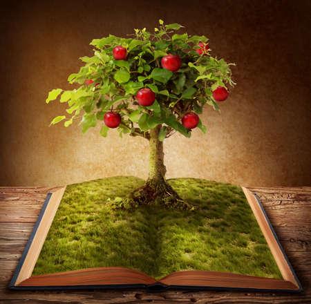 Foto de Book of knowledge growing out of book - Imagen libre de derechos