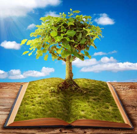 Foto de Tree of knowledge growing out of book - Imagen libre de derechos
