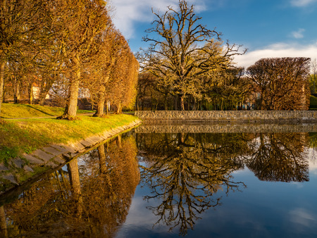 Photo for Trees and their reflection in the Oliwa Park. Early spring. - Royalty Free Image