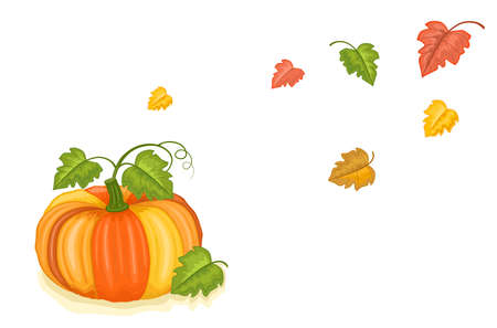 Autumn harvest with tasty pumpkin and falling leaves. Isolated over white background.