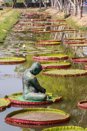 Statue is in the lotus pool
