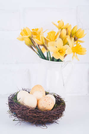 Photo pour Jar with narcissuses and eggs at the white brick background. Spring and Easter concept. Vertical - image libre de droit