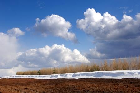 Spring last snow