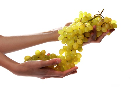 holding a bunch of grape