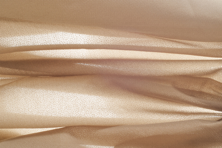 Photo pour texture of the skin. The photo was taken in a studio - image libre de droit