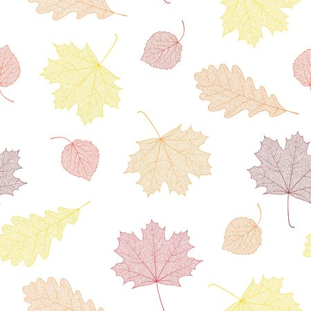 Illustration pour Seamless autumn pattern from skeletons of leaves. Vector illustration for banner, card, background, textile, paper packaging, wrapping paper, scrapbooking, wallpaper and textile. Vector illustration. - image libre de droit