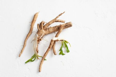 Foto für Common chicory root (Cichorium intybus). Chicory root (Cichorium intybus radix) helps to cleanse and strengthen the body, normalize the heart and blood vessels. Top view. Copy space text - Lizenzfreies Bild