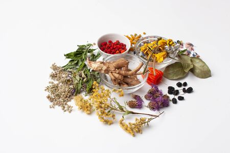 Photo pour Herbs for the preparation of fees, the use of additives to tea to strengthen the body and in folk medicine - image libre de droit