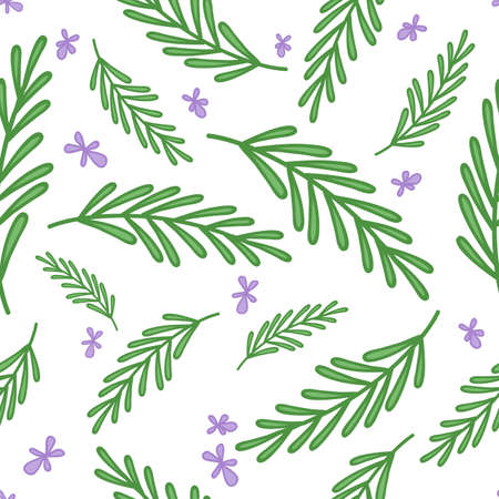 Illustration pour Rosemary doodle background. Seamless vector pattern - image libre de droit