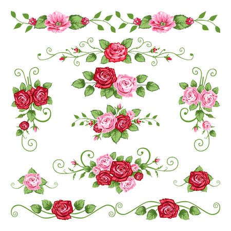 Roses collection