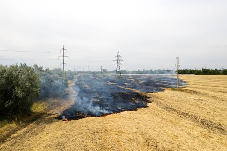 Photo for On the field after harvesting grain crops burning stubble and straw. Factors causing smoke in atmosphere and global warming. Smoke from burning of dry grass (drone image). Small animals are bending - Royalty Free Image