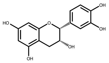 Illustration pour Epicatechin, a natural antioxidant found in plants - image libre de droit