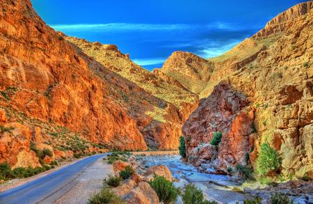 Todgha Gorge, a canyon in the Atlas Mountains. Morocco