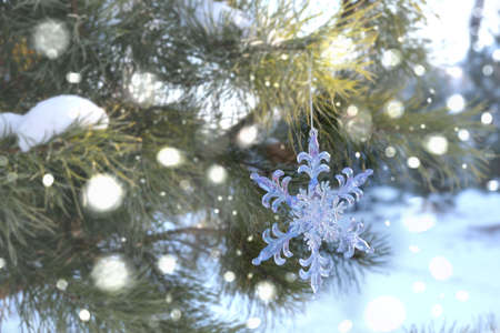 Photo pour Snowflake Christmas toy, Spruce, fir green branch in winter park covered with snow. New Year holiday atmosphere, spirit. Glare and bokeh, evening twilight - image libre de droit