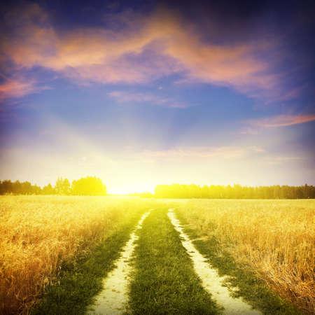 Photo pour Sunset sky and rural road   - image libre de droit