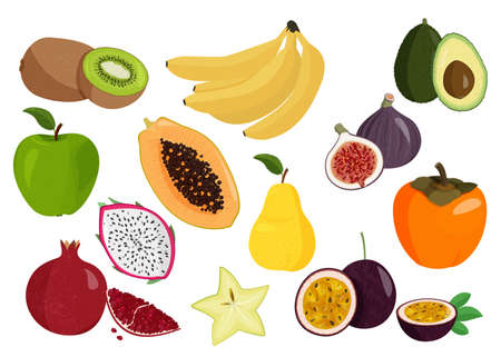 Illustration pour Realistic vector illustrations. Fresh fruits collection. Set of sweet fruits. - image libre de droit