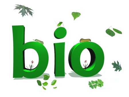 Green bio letters color surrounded by green leaves and insects in white background