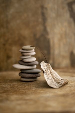 Stacked stones and a fallen leaf in a earth toned setting