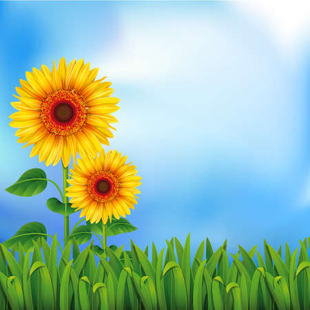 Illustration pour Two yellow sunflowers on the blue background  Mesh. Clipping Mask - image libre de droit