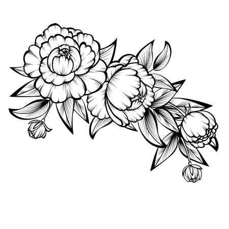 Illustration pour Branch of roses on a white background; - image libre de droit