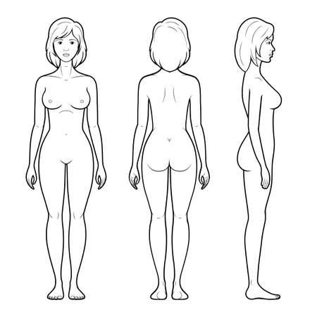 Ilustración de Vector illustration of female figure - front, back and side view in outline - Imagen libre de derechos
