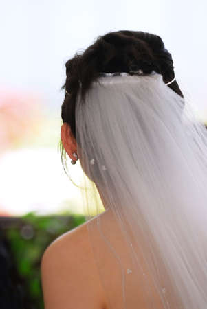 Young bride in veil on her wedding day.