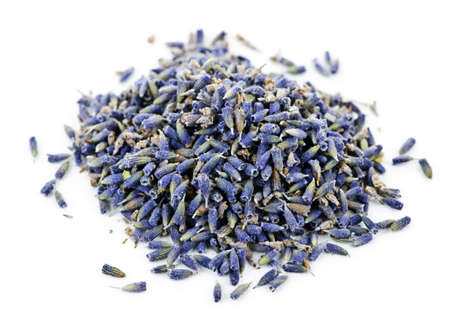 Pile of medicinal lavender herb flowers on white background