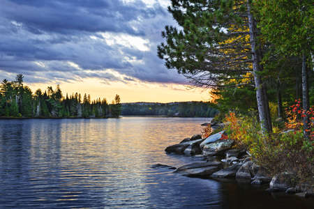 Dramatic sunset and pines at Lake of Two Rivers in Algonquin Park, Ontario, Canada