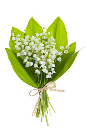 Photo pour Lily of the valley flowers bouquet isolated on white background - image libre de droit