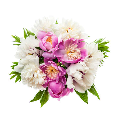 Photo for Bouquet of fresh peony flowers isolated on white background - Royalty Free Image