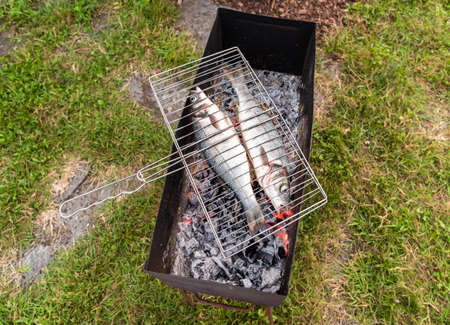 Photo pour Raw sea Bass fish on charcoal stove ready to grill. - image libre de droit