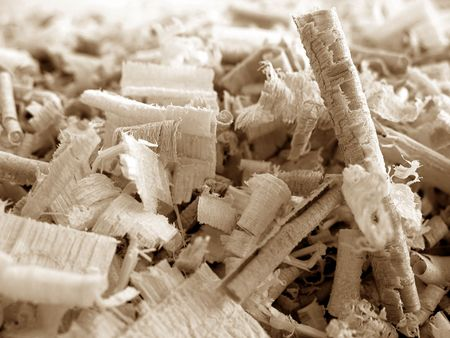 Close-up of wood shavings of various shapes.