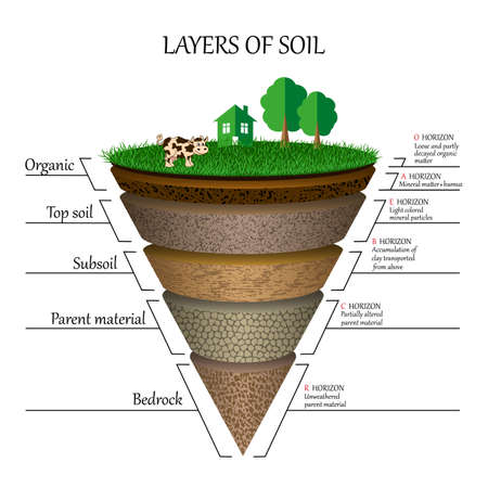 Illustration for Layers of soil diagram images - Royalty Free Image