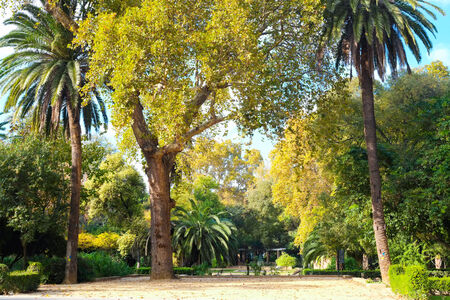 Maria Luisa park in Seville, Andalusia, Spain