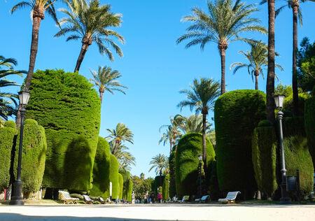 Parque Genoves in Cadiz, Andalucia, Spain
