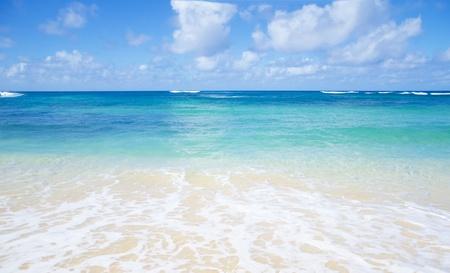 Soft Hawaiian Waves