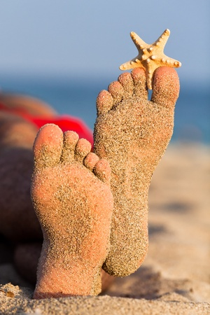 Photo pour Sandy feet with starfish. - image libre de droit