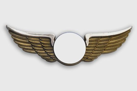 Golden wings pin, on white background