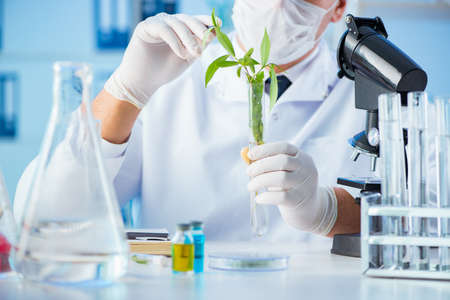 Photo for Biotechnology concept with scientist in lab - Royalty Free Image