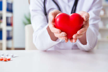 Photo pour Doctor cardiologist with red heart in the hospital - image libre de droit